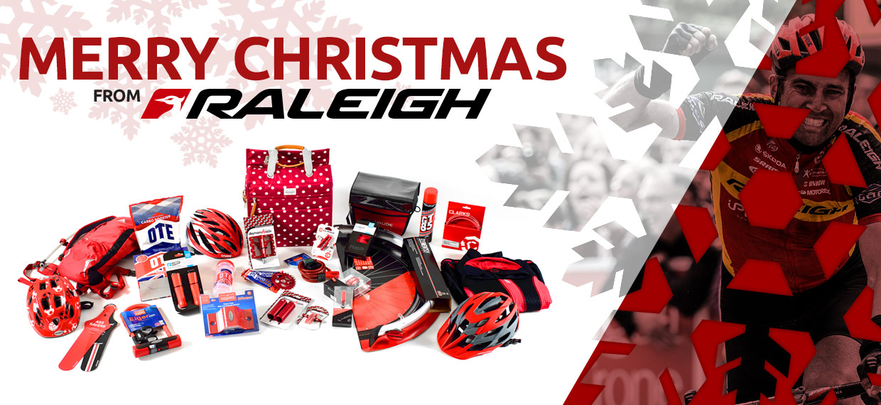 Merry Christmas From Raleigh