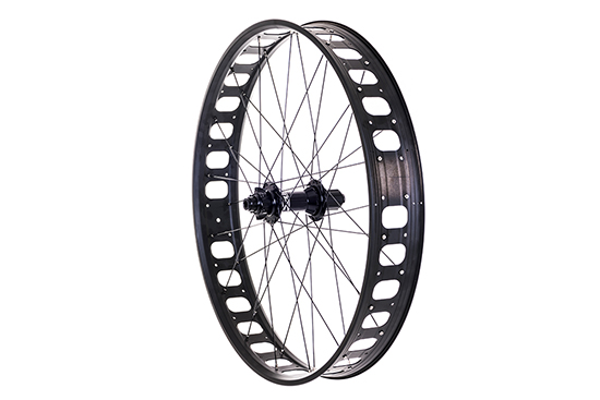 Rear Salsa 10 x 190mm q/r & 12 x 197mm bolt through Alex Blizzerk 90 Tubeless ready 32h